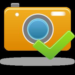 confirm camera icon
