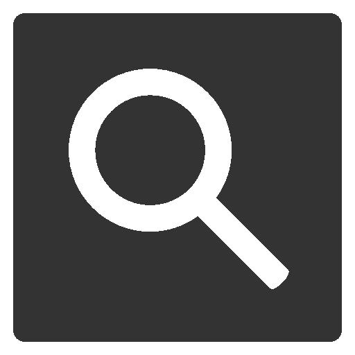 google web search icon