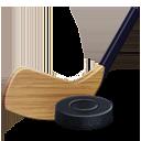 hockey and ice hockey icon