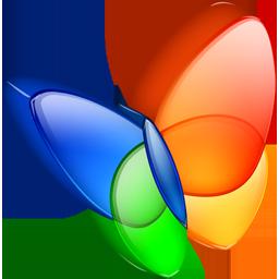 msn exporer icon
