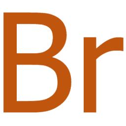 sign adobe bridge icon