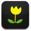 small yellow flowers icons